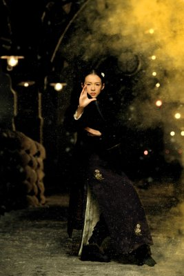 A nagymester - Ziyi Zhang