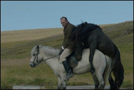 lovak és emberek